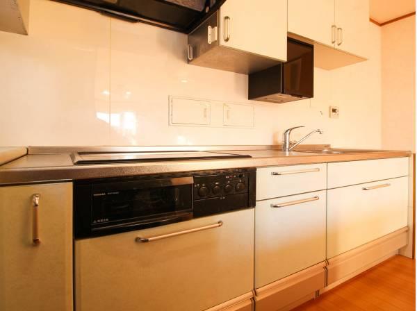 すっきりと広々したキッチンはカウンターも設置済み。システムキッチンの北側内壁にはダストボックスがあり、処分時は外部北側ドアより回収可能です。使い勝手に拘ったキッチン空間です。